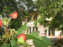 offerta agriturismo il gelso in toscana vicino mare