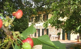OFFERTA AGOSTO AGRITURISMO IL GELSO IN TOSCANA VICINO MARE