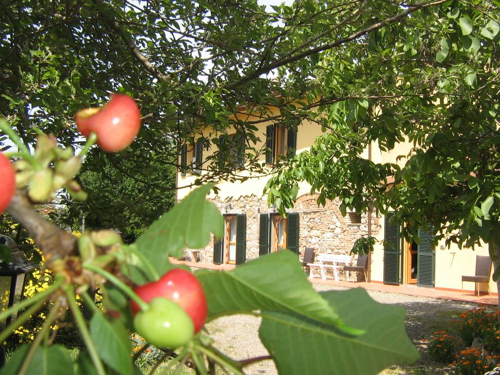 CASA RURAL AGRITURISMO IL GELSO