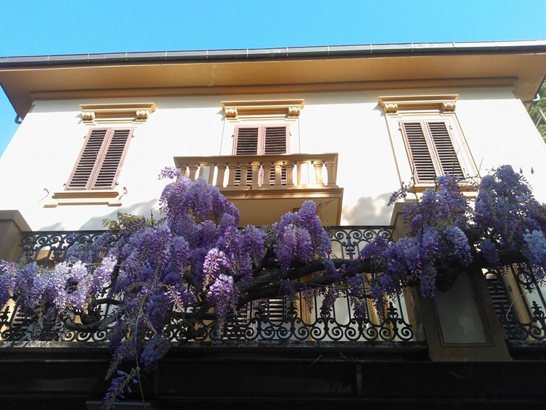 Appartamenti Villa Violetta>