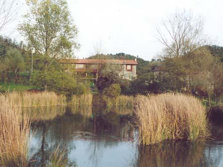 Farmhouse Il Picchio Verde