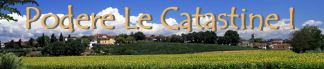 Farmhouse Podere Le Catastine I