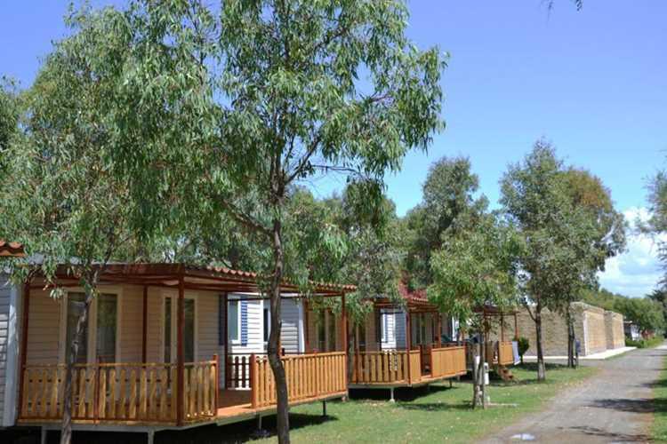 campeggio Le Palme Marina di Bibbona