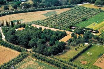 Agriturismo Il Piaggione