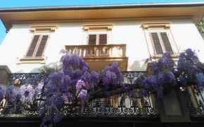 Albergo ELBA HOTEL Rosignano Marittimo