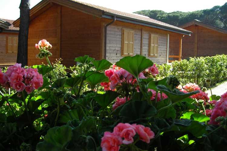campeggio Oasi Albinia