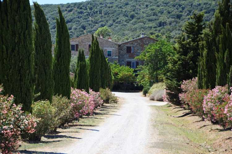 Farm Holidays La valentina Orbetello