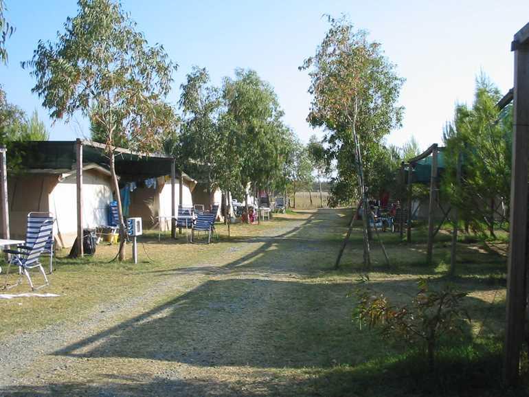 campeggio Il Gineprino Marina di Bibbona