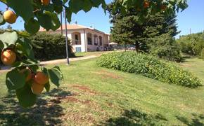 Holidays House Le Muratelle San Vincenzo