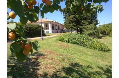 case vacanza Le Muratelle