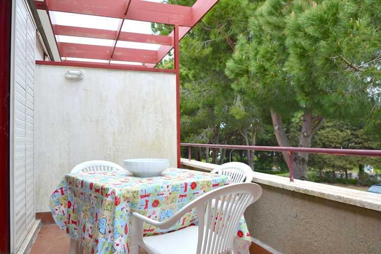 agenzia immobiliare Marinetta Vacanze Marina di Bibbona