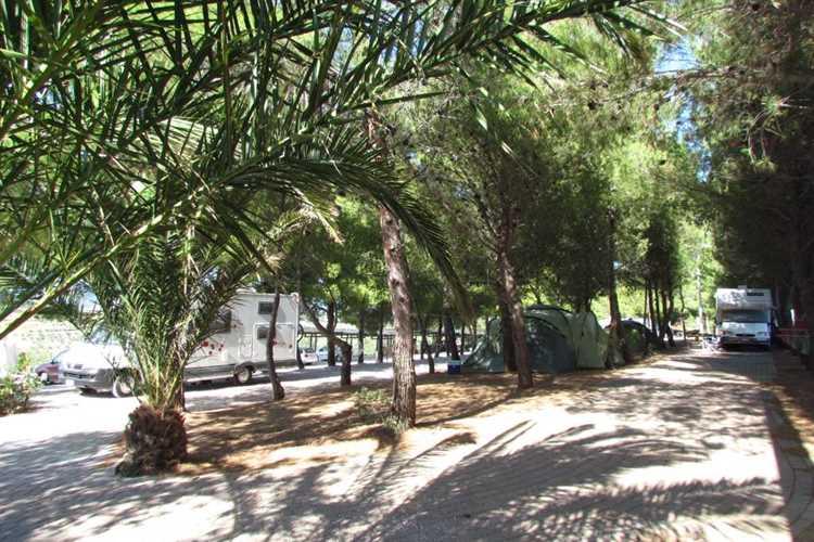 campeggio Camping Le Rondini di San Bartolo San Vincenzo