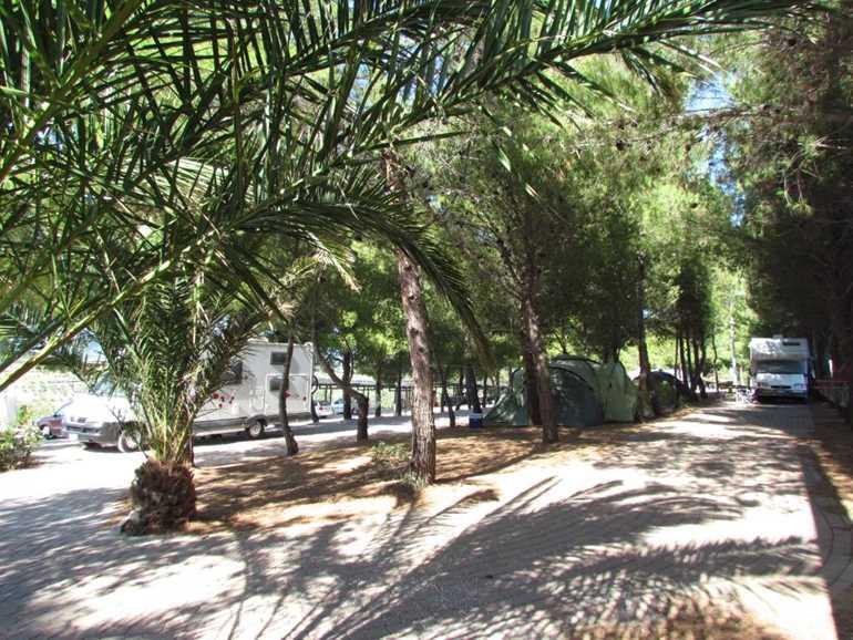 Camping Camping Le Rondini di San Bartolo San Vincenzo