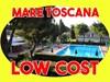mare toscana vacanze low cost marina di bibbona 300 mt dal mare affitto appartamenti in residence con piscina
