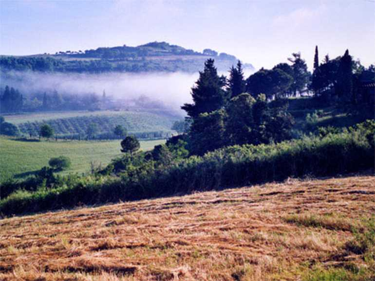Farm Holidays Podere Chiavicone Casale Marittimo