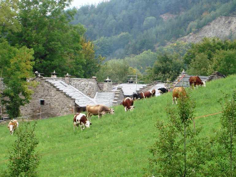 Farm Holidays Il Borgo dei Celti Fiumalbo