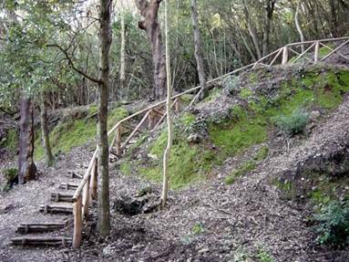 I Parchi naturali di Montioni e di Poggio Neri