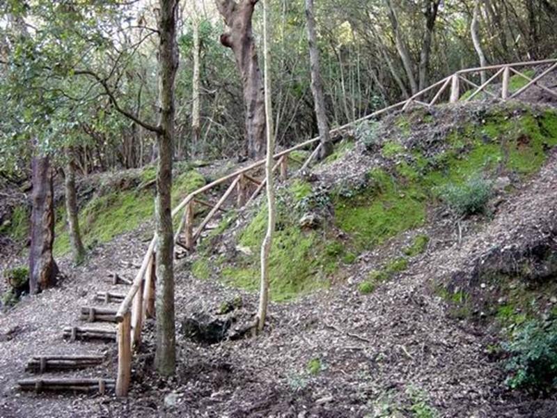 nature reserves of montioni and poggio neri