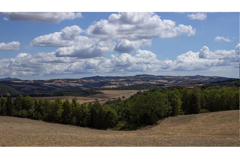 le spiagge di cecina