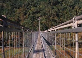 The suspended bridge