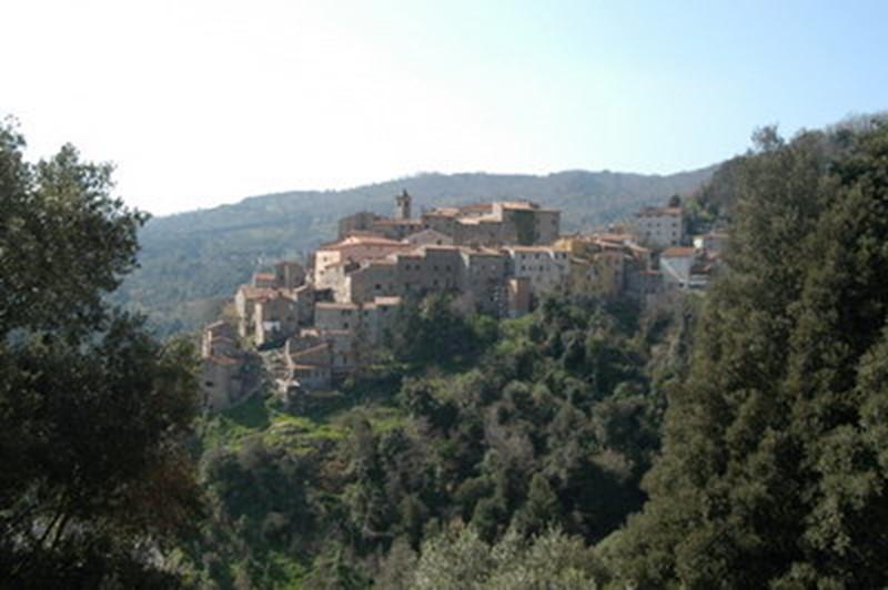 the history of sassetta