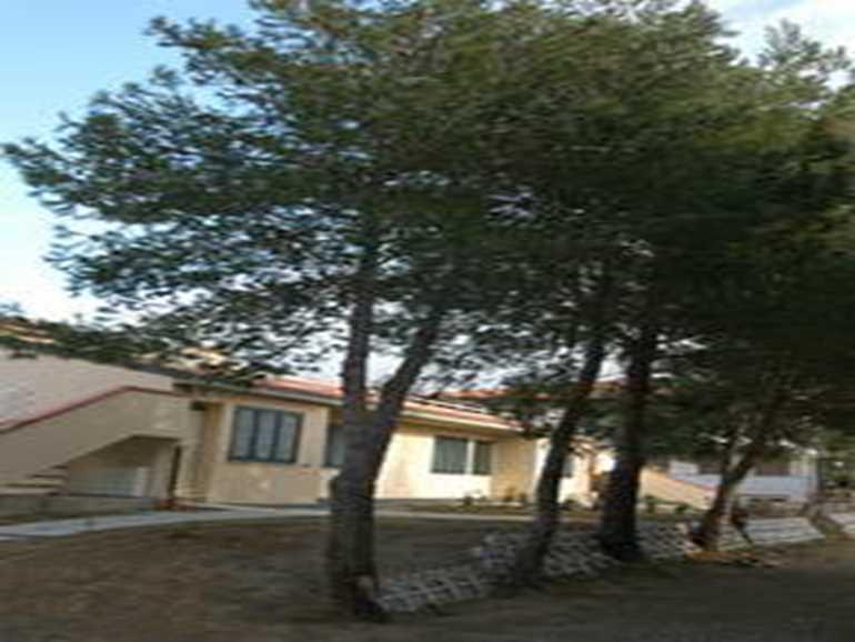 Camping La Rosa dei Venti Marina di Bibbona