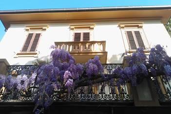 Appartamenti Villa Violetta