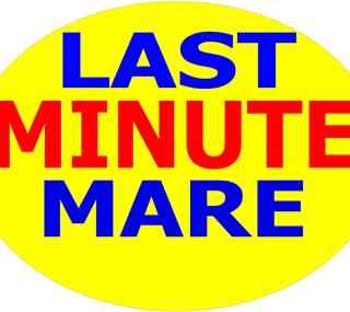 Offerta LAST MINUTE MARINA DI BIBBONA TOSCANA 10 GIORNI euro 750 dal 26 luglio al 5 agosto Bilocale 300 mt dal mare con piscina